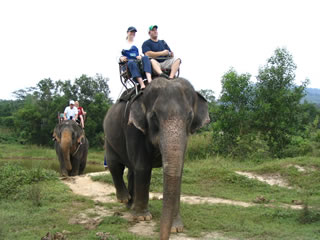 Elephant Safari @ Phuket, Thailand. 2006