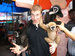 Man and his monkeys