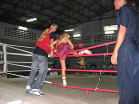 Muay Thai fighter.