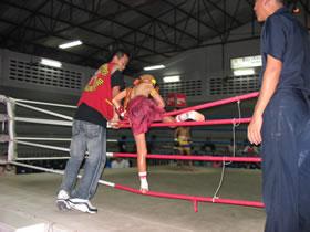 Muay Thai fighter.